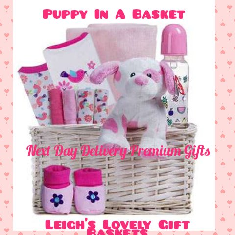 Woven basket holds essentials for the new baby girl in a darling print. Assortment of Pink Clothing, Booties, Pink Baby Blanket Wash Cloths plus a baby bottle and darling plush puppy!