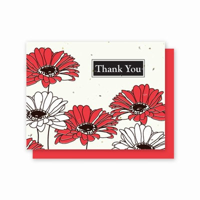 Red, White and Black Gerber Daisy Printed card  5 pack embedded with Wildflower Seeds. Photo link